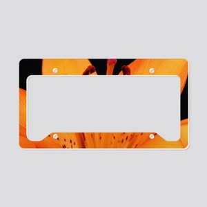 Tiger Lily Up Close And Perso License Plate Holder
