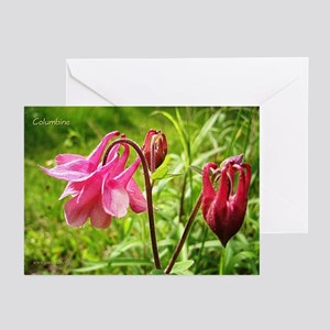 Columbine Greeting Cards (6)