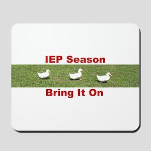 IEP Ducks in a Row Mousepad