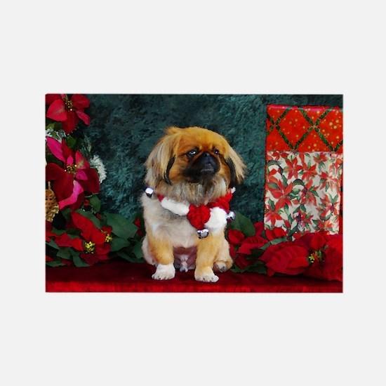 Pekingese Christmas Pumpkin Rectangle Magnet