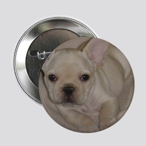 "Bernard 2.25"" Button (10 pack)"