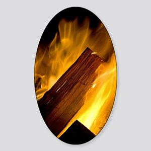 The Campfire Sticker (Oval)