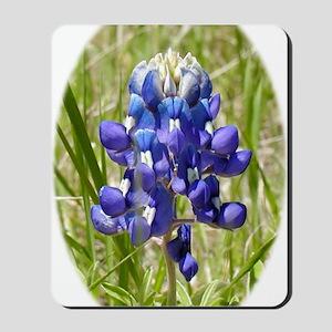 Texas Bluebonnet Mousepad