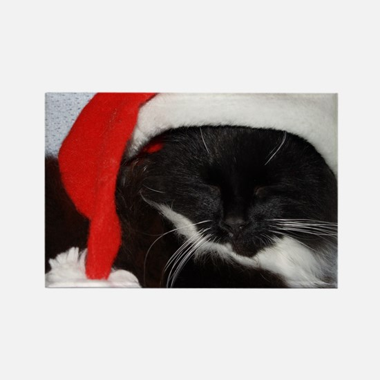 Little Christmas Cat Rectangle Magnet