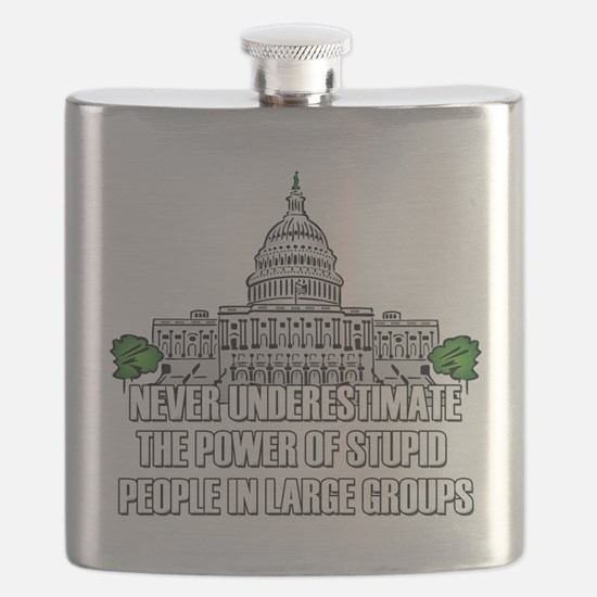 Stupid People In Washington DC Flask