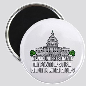 Stupid People In Washington DC Magnet