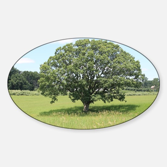 The Tree of Life  Sticker (Oval)