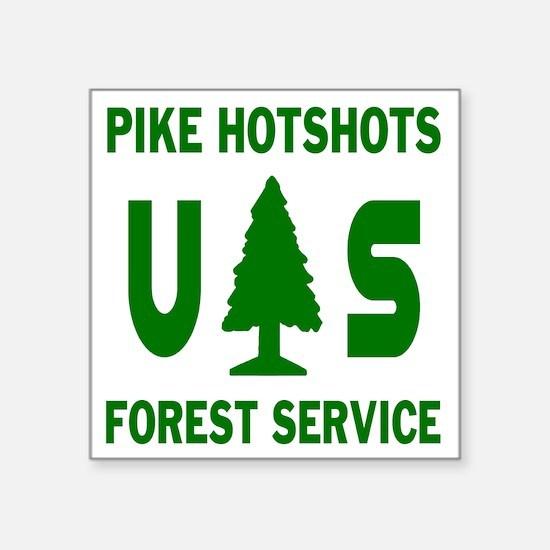"Pike-Hotshots-Shirtback-Gre Square Sticker 3"" x 3"""