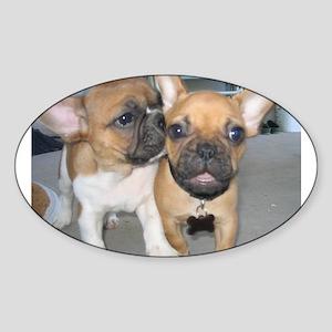 Owen (with buddy Leroux) Oval Sticker