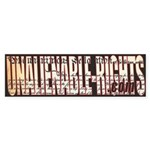 Unalienable-Rights Bumper Sticker