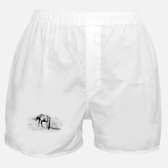 Black horse - Boxer Shorts