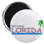 Visit Scenic Florida 2.25