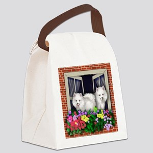 windoweski copy Canvas Lunch Bag