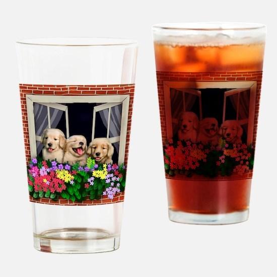 windowretriever copy Drinking Glass
