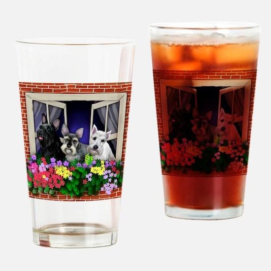 windowshnaucer3a copy Drinking Glass