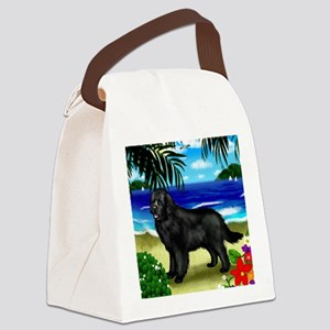 newfoundlandbeach copy Canvas Lunch Bag