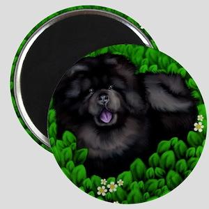 chowblackbush copy Magnet