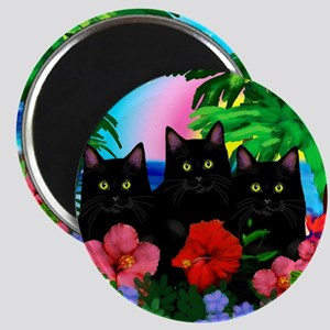 beachparadise bl cats Magnet