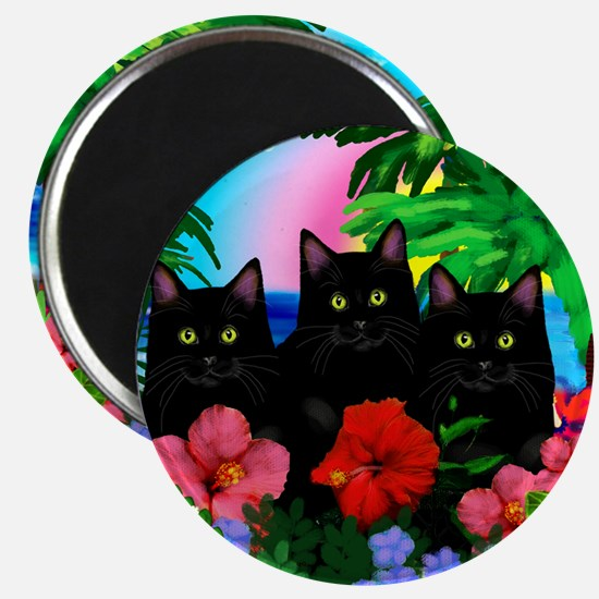beachparadise bl cats Magnet
