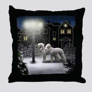 SC BT Throw Pillow