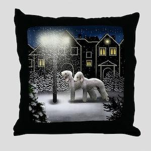 SC BT Throw Pillow