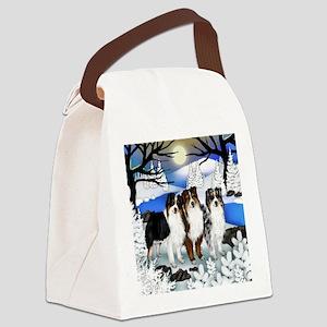 FROZENLAKE asd Canvas Lunch Bag