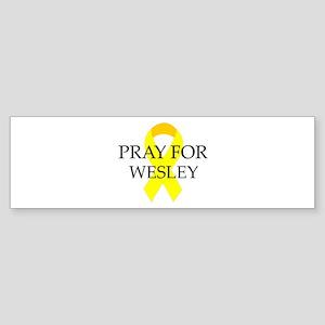 Pray for Wesley Bumper Sticker