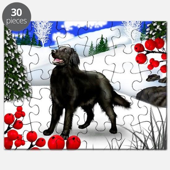 wb fcr Puzzle