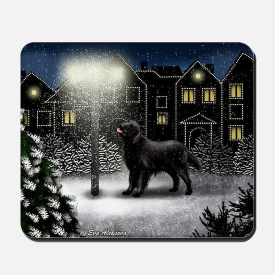 snowtown fcr Mousepad