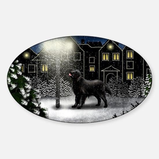 snowtown fcr Sticker (Oval)