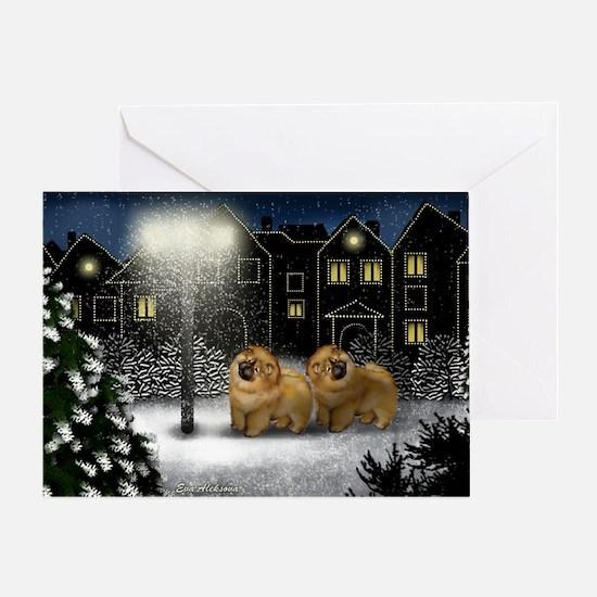 snowtown cc Greeting Card