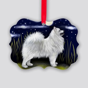 magnet 1 copy Picture Ornament