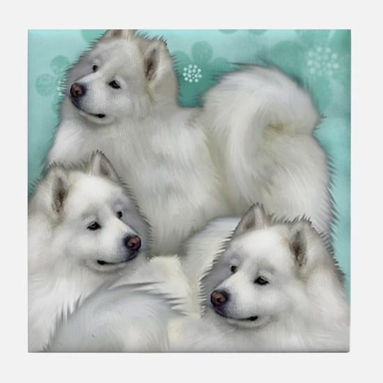 samoyed dogs Tile Coaster