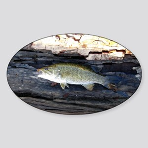 Woody Smallmouth Bass Sticker (Oval)