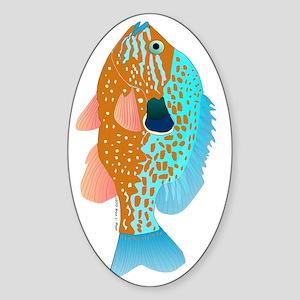 Longear Sunfish v Sticker (Oval)