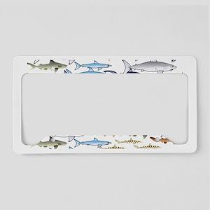 School of Sharks w License Plate Holder