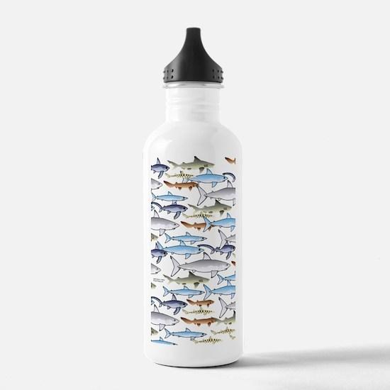 School of Sharks n Water Bottle