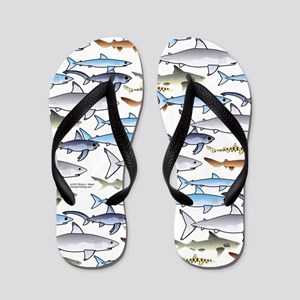 School of Sharks t Flip Flops
