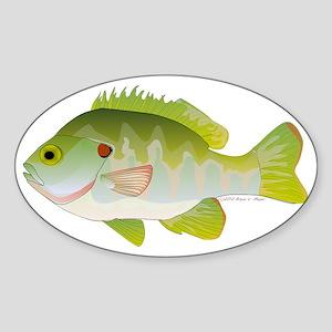 Redear Sunfish T Sticker (Oval)