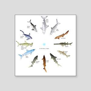 "Shark Clock Two Square Sticker 3"" x 3"""