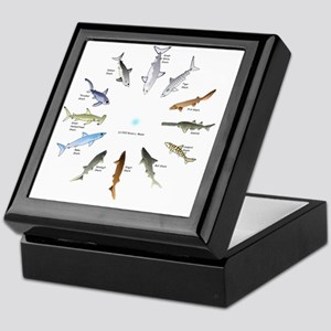 Shark Clock Two Keepsake Box