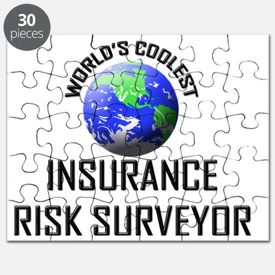 INSURANCE-RISK-SURVE90 Puzzle