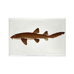 Nurse Shark Rectangle Magnet (100 pack)