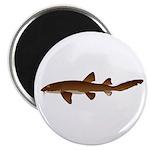 Nurse Shark Magnet