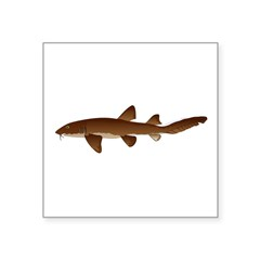 Nurse Shark Sticker