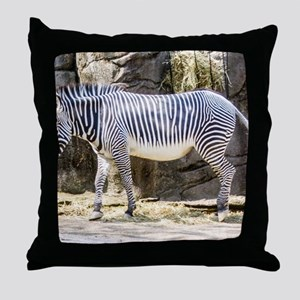 Horse of Another Color Throw Pillow