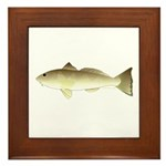 Southern Kingfish Framed Tile