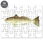 Southern Kingfish Puzzle