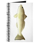 Southern Kingfish Journal