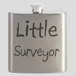 Surveyor48 Flask